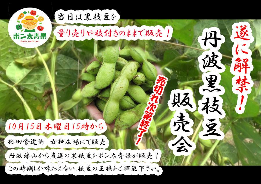 ついに解禁!「ポン太丹波黒枝豆販売会」を開催します!